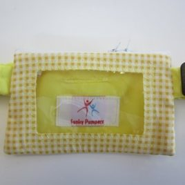 Yellow Gingham Clear View pouch 24 – 30″