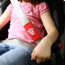 Rescue Facts Alert – Seat belts / Bags